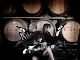 Rojomoma Company...Sam, Bernie and Raj