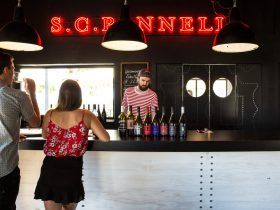 Pannell Wines