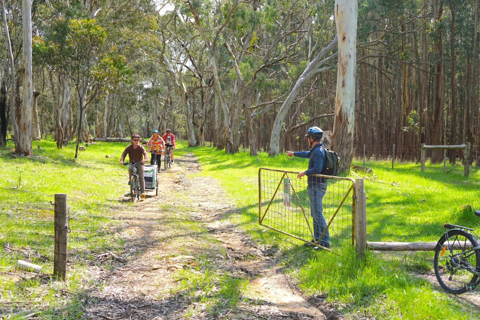Adams Gully Trail