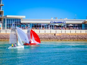 Sabre Sailing National Championships, Wallaroo