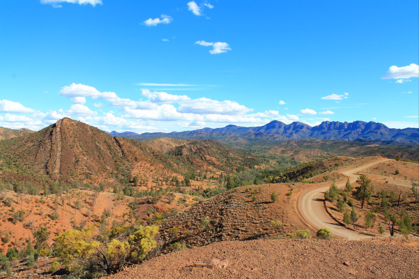 Tour to Flinders Ranges and Razorback Lookout
