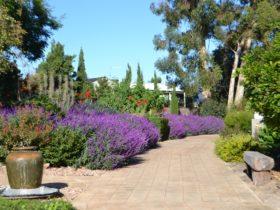 Walkway Sacred Garden