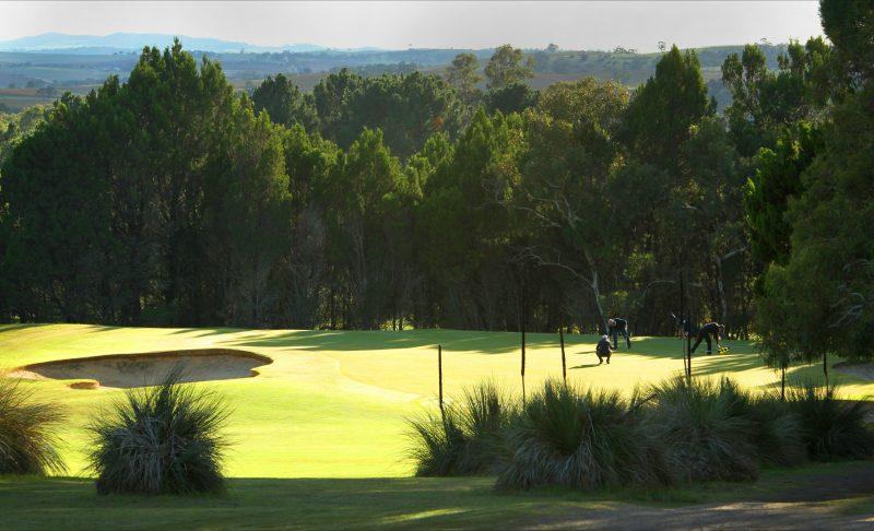 Sandy Creek Golf Club Barossa Valley