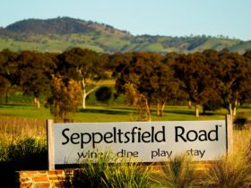 Welcome to Seppeltsfield Road