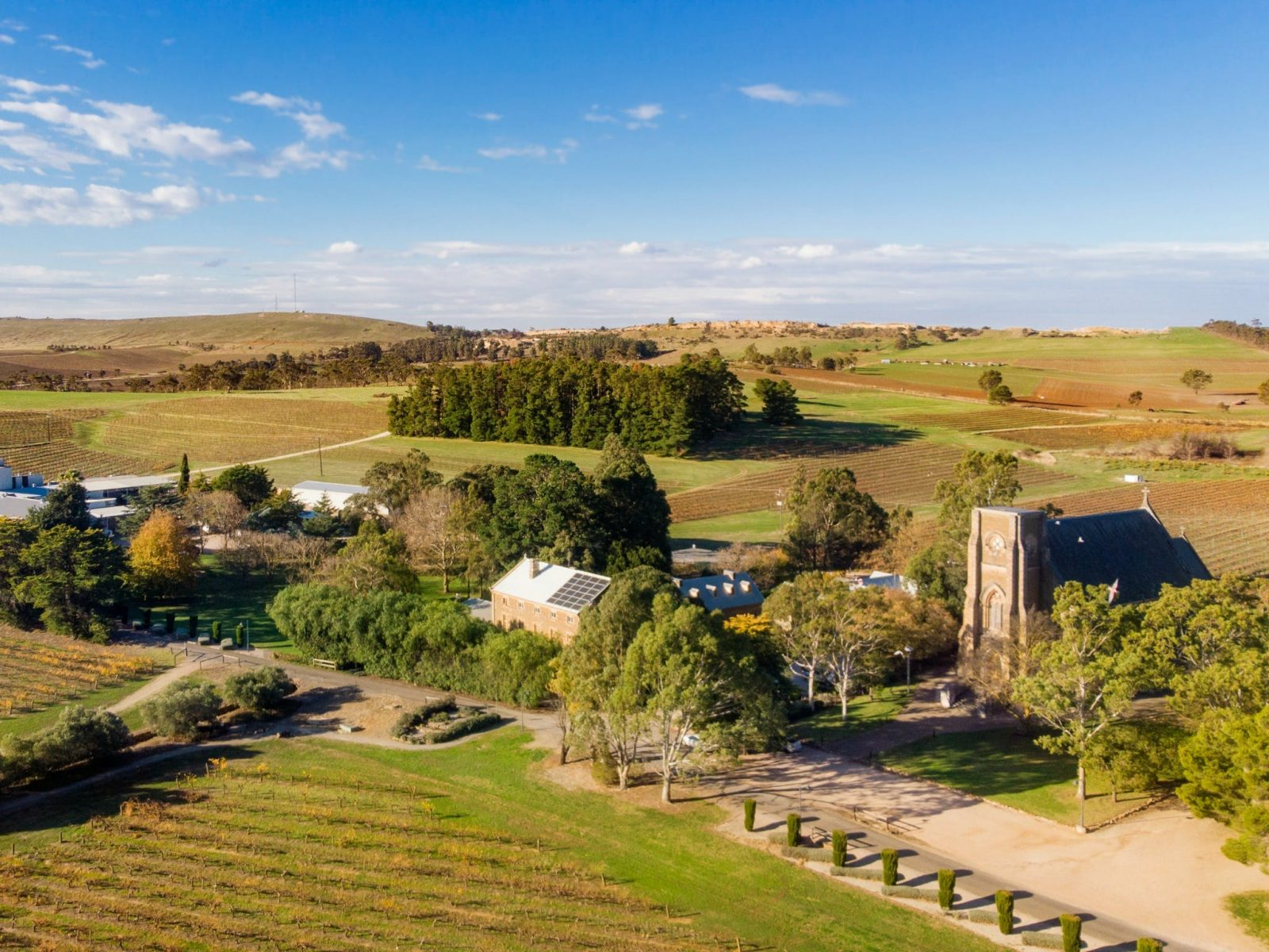 Explore Sevenhill Cellars winery and historical sites