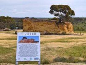 shell hill