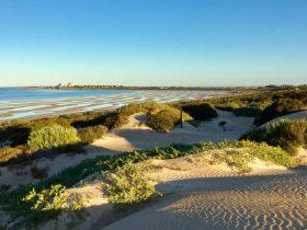 Shelly Beach Dune Walk Trail
