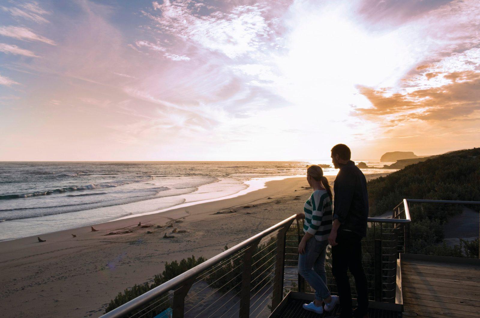 Seal Bay Sunrise Exclusive Tour