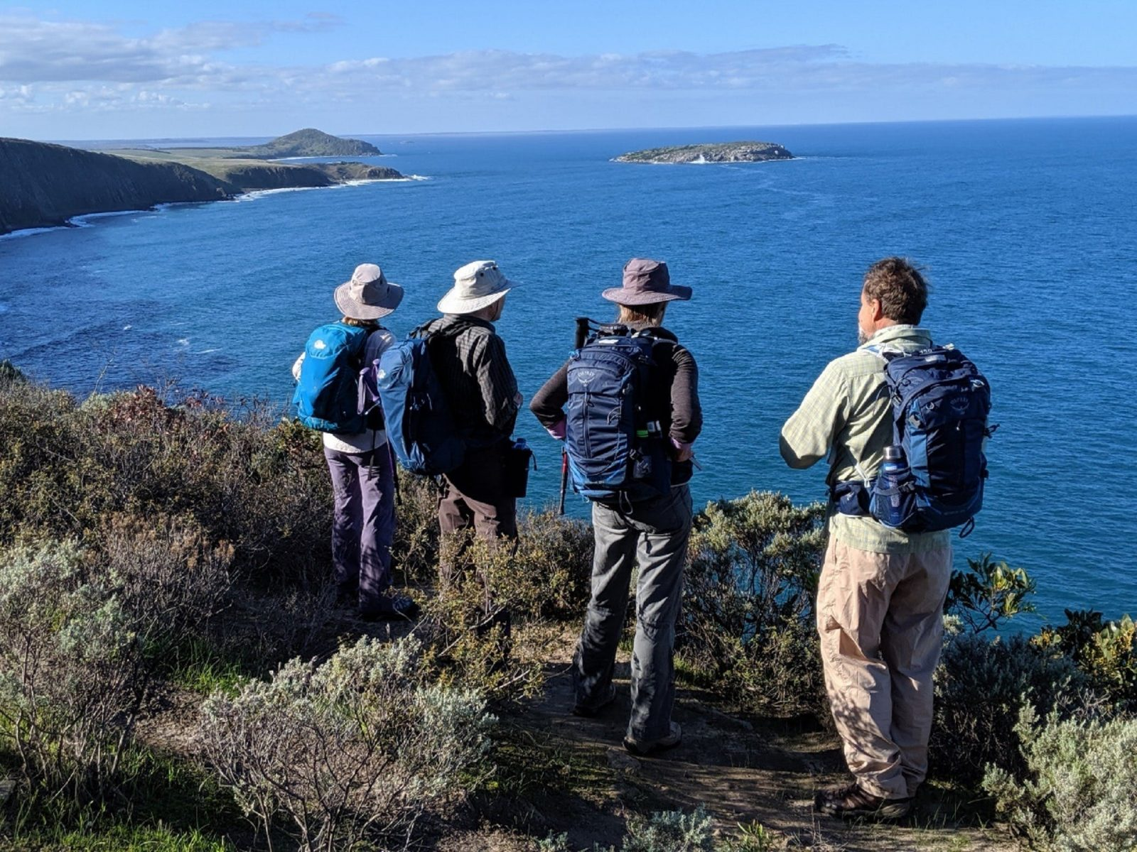 Taking in the view to West Island on the Southern Ocean Walk