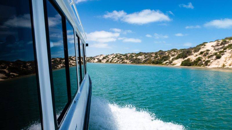Our boat is specifically designed to allow easy boarding & disembarking in the Coorong National Park