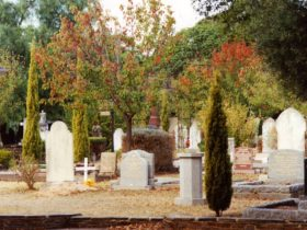 Autumn leaves in the Cemetery