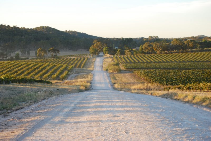 Neagles Rock Road: Winery Site
