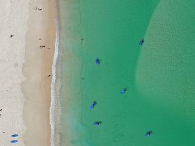 Paddle boarders from above