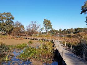 Swanport Wetlands