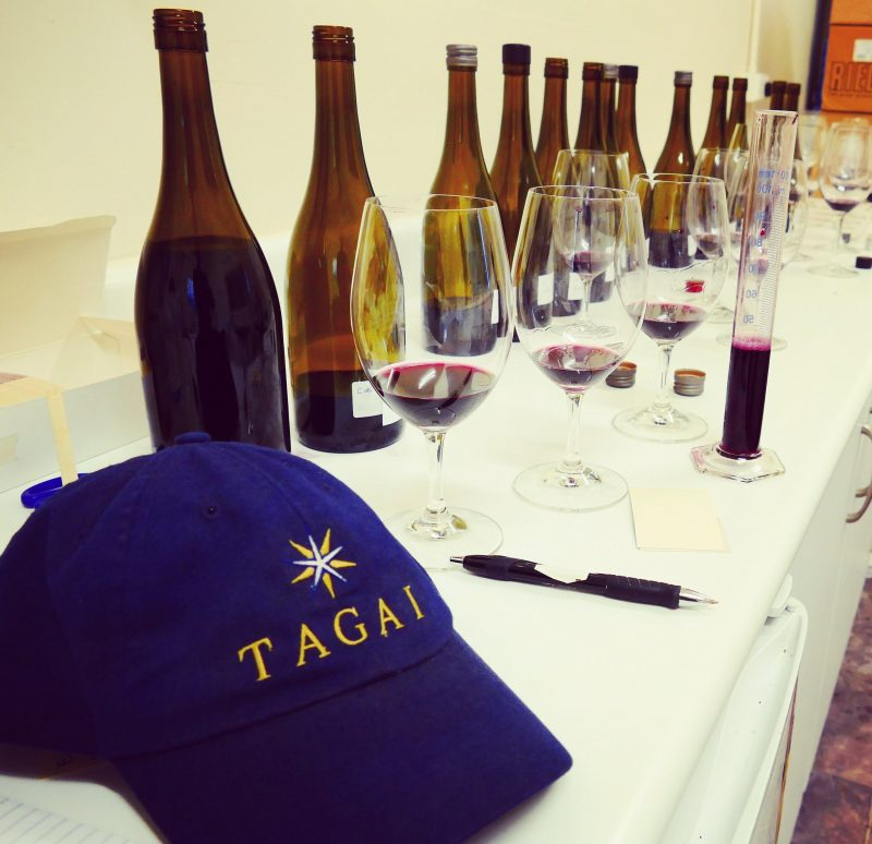 Small batch wines are blended for the final selection of Tagai and Scar Tree wines.