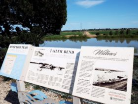 River interpretive signage Tailem Bend