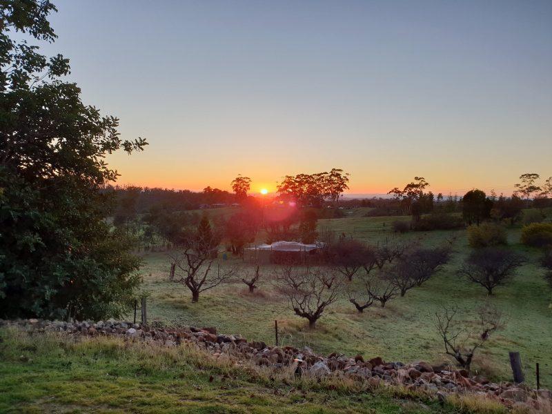 Photo of sunrise over taralee Orchards
