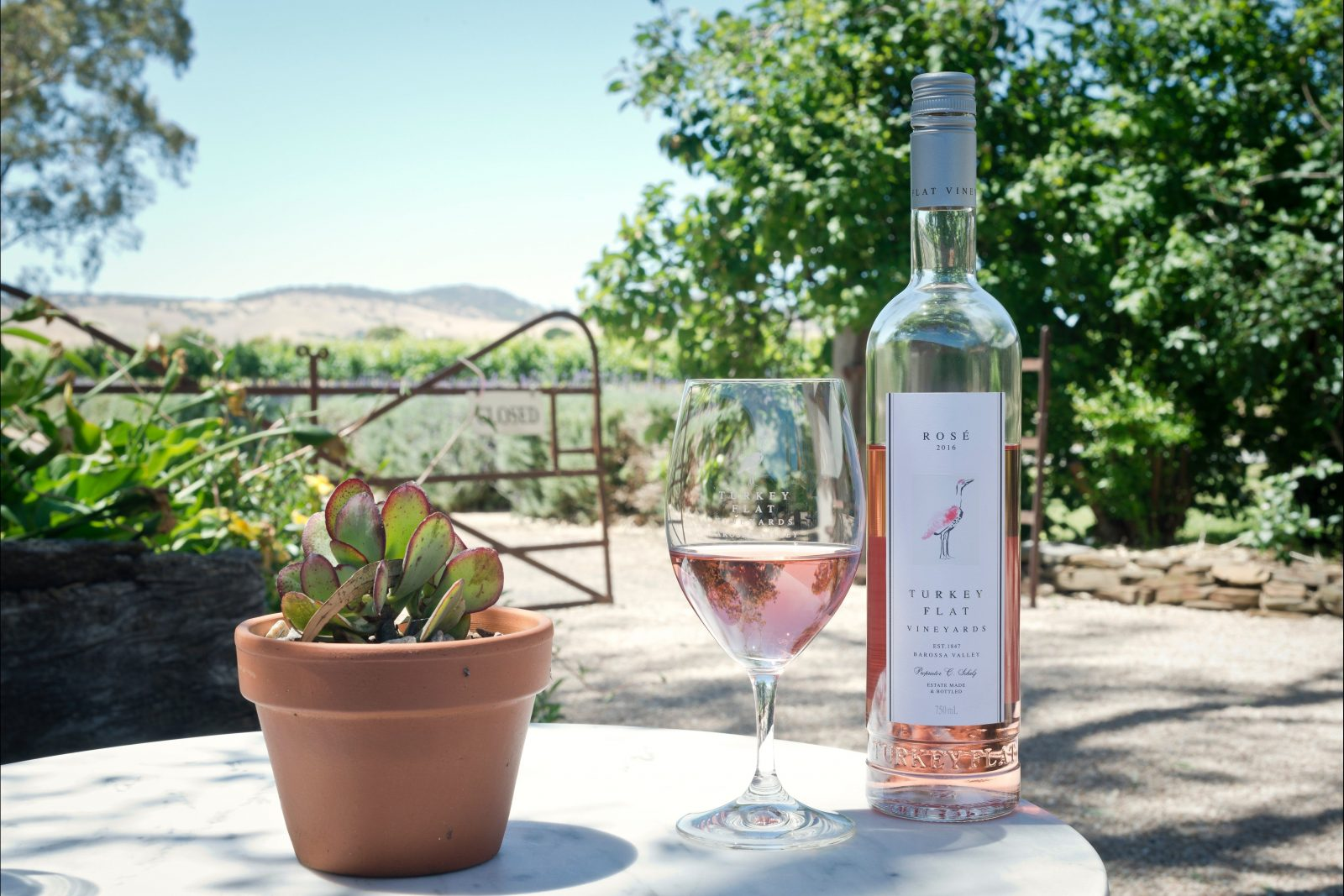 Enjoy a glass of rosé in the gardens at Turkey Flat Vineyards along the Bethany to Angaston Trail