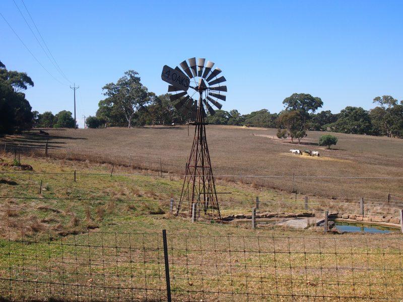 Rural scenery at Four Oaks Farm