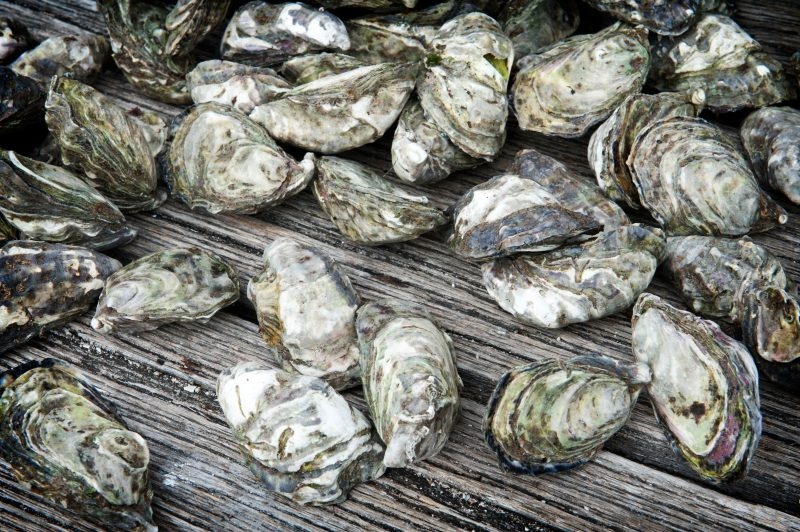Wholeshell oysters