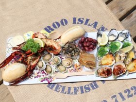 Image of the half platter; 1 dozen oysters , abalini marron, smoked oysters, smoked fish, ki olives
