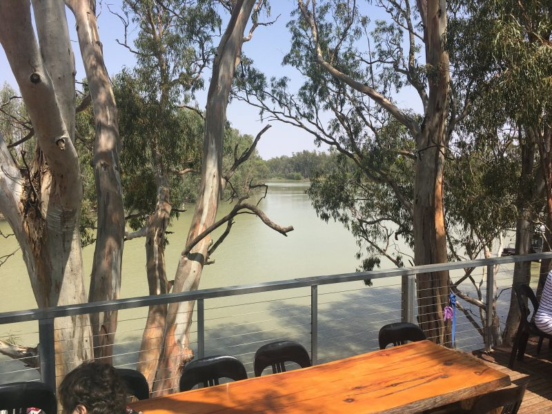View while enjoying the produce of the Wilkadene Woolshed Brewery, out of Renmark