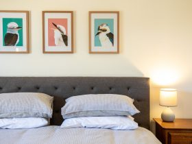 bed with three pictures of Kookaburras each with a coloured background and a lamp on a bedside table