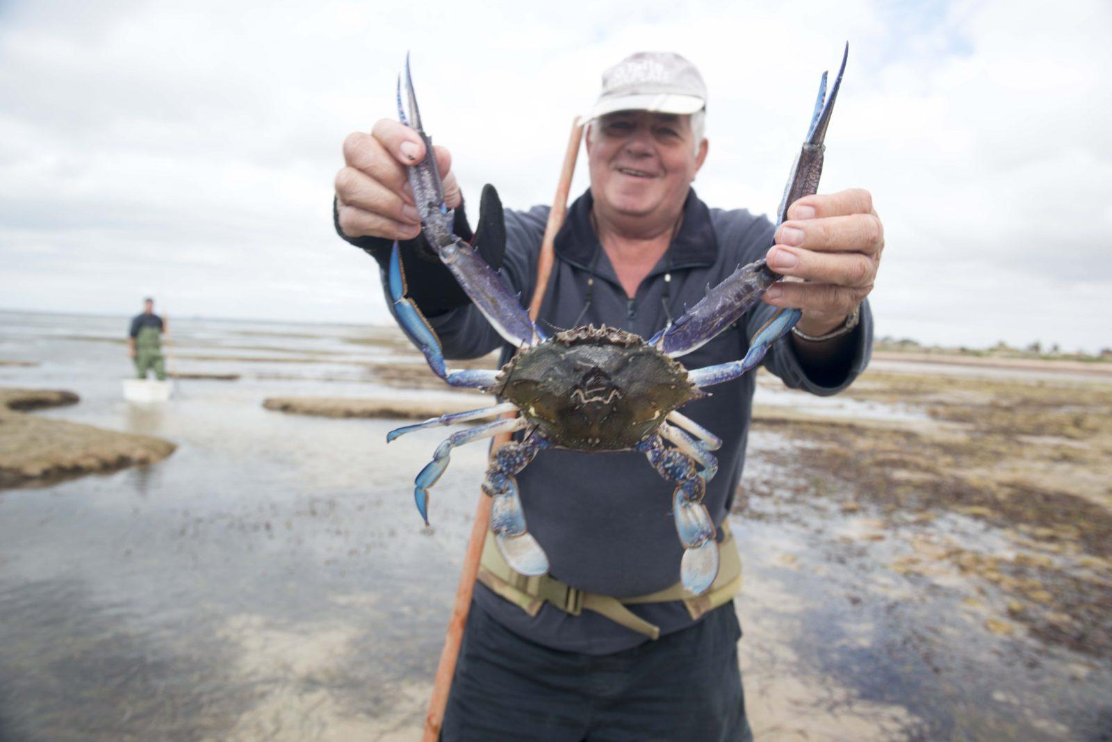 crabbing, Tiddy Widdy Beach, Yorke Peninsula, South Australia