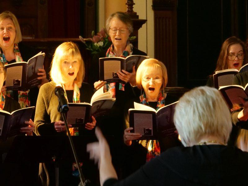 Illumina Voices performing