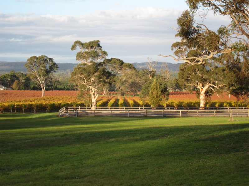 Top Note Winery, Kuitpo, Adelaide Hills, South Australia