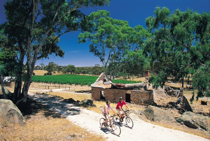 Cycling the Riesling Rail Trail in the Clare Valley