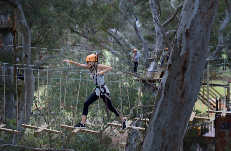 TreeClimb Crossing Adelaide