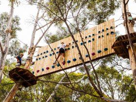 Black Course - Climbing Wall