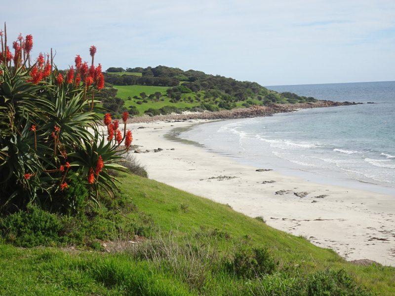 The Tu Emuz beach.