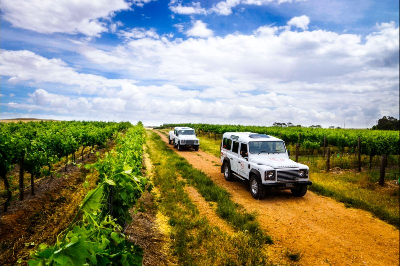 Two Hands Wines Vineyard Experiences take guests beyond the tasting room!
