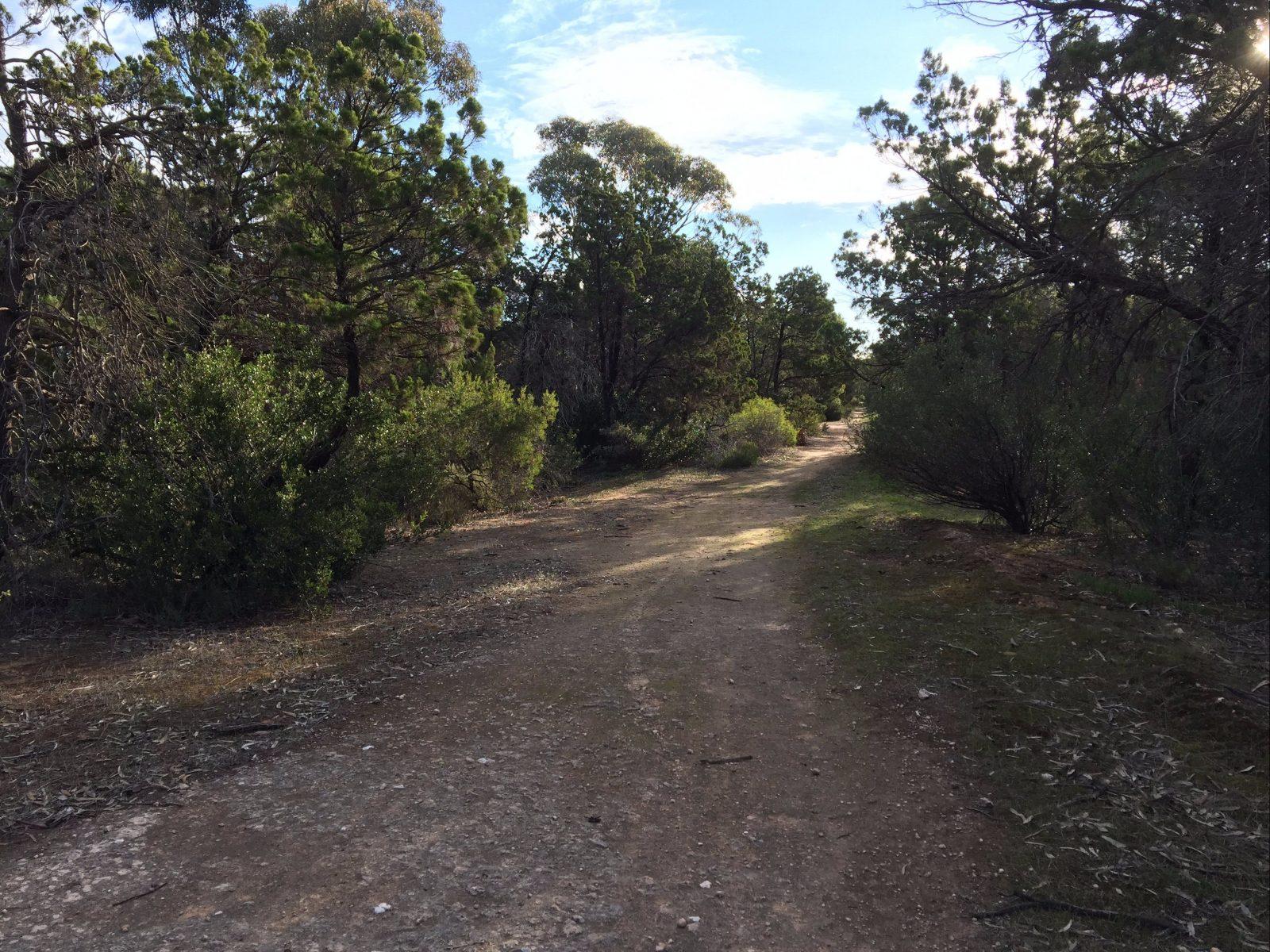 Victoria Park, Moonta