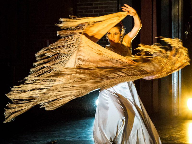Aylin Eleonora and Raul Mannola in Vivir Flamenco Guitar and Dance