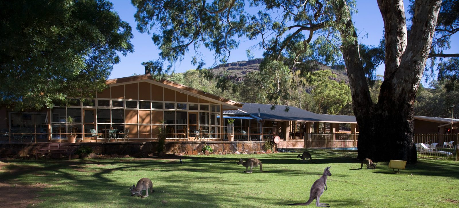 Wilpena Pound Resort - Flinders Ranges, SA