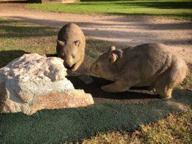Wombat Statues, Moonta