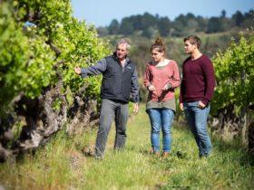WOODSTOCK Wine Estate - Scott & children