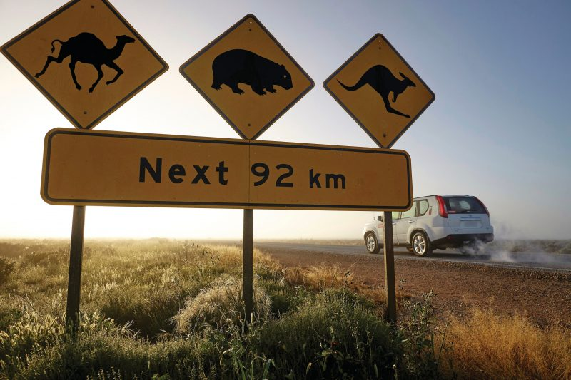 Vehicle and famous wildlife crossing sign on the Nullarbor