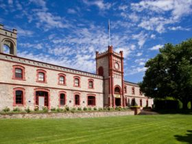 The Clocktower @ Yalumba