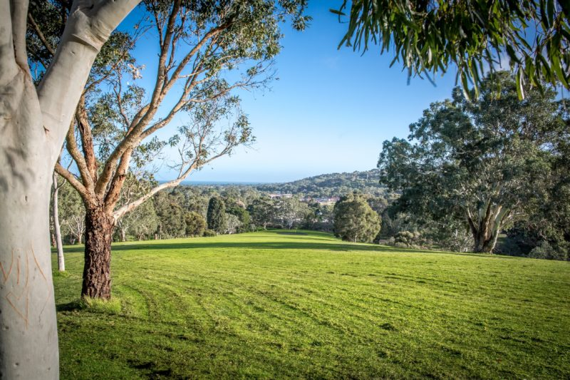 golf,scenic