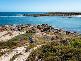 Yorke Peninsula Coastal Walks