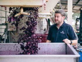 Joe Cory, our Winemaker
