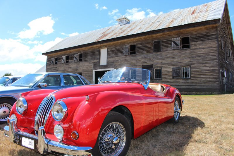 Woolmers Estate - Woolshed - Car