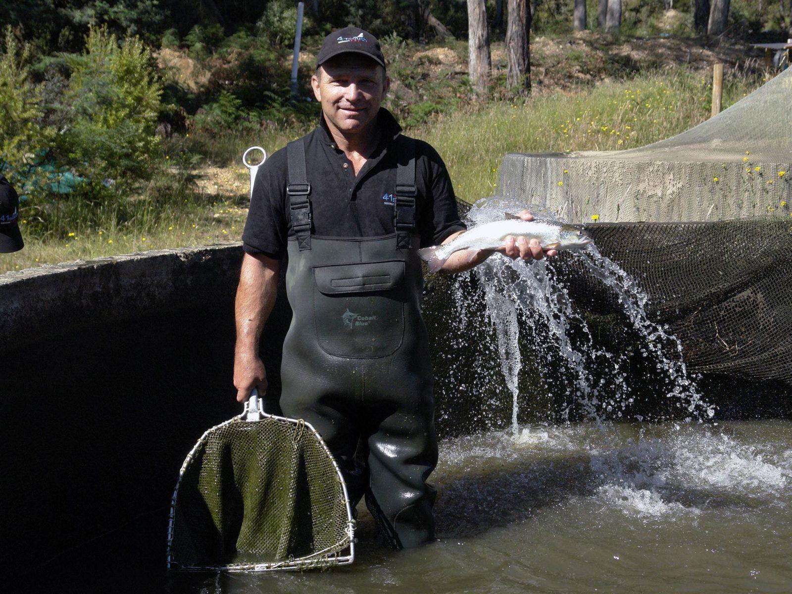 Ziggy Salmon