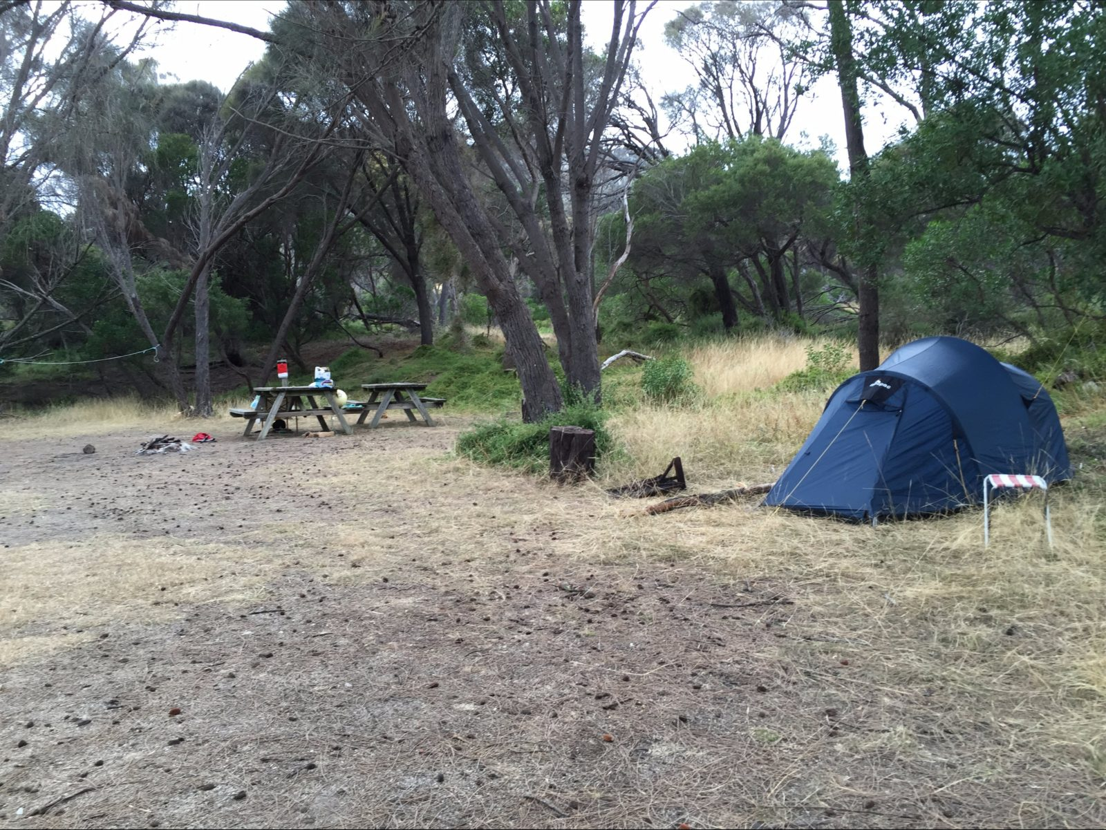 Camping ground at Allport Beach Flinders Island Tasmania