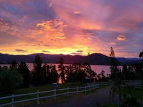Ambience on Huon Bed and Breakfast