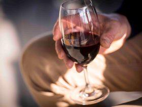 Bangor Vineyard Shed overlooks our 4 hectare vineyard that produces premium Tasmanian wine.